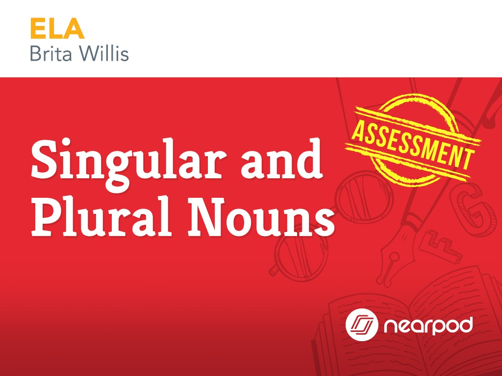 assessment singular and plural nouns