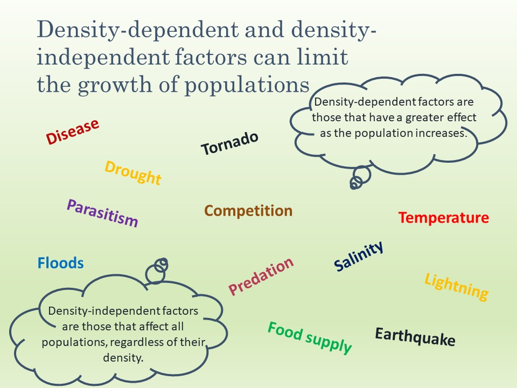Density Dependent Limiting Factors Vs Density Independent ...